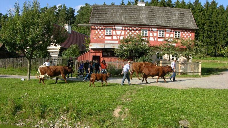 Ausflugstipps Oberpfalz